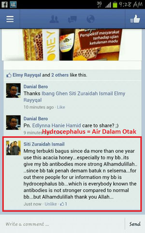 Facebook Puan Siti Zuraidah Ismail